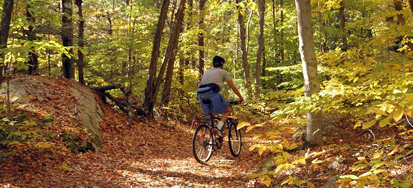 Nybörjarmisstag att undvika som cyklist